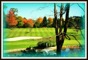 golfrevised